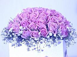 今年情人节花卉市场低迷 一天上百万支玫瑰被销毁