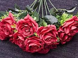 百万支玫瑰被销毁 隔着屏幕都觉得心疼