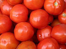 西红柿属于蔬菜还是水果?为什么说西红柿是水果