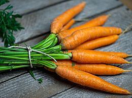 二月份种植什么蔬菜?附上2月蔬菜种植指南