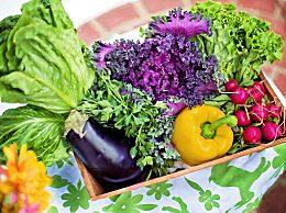 2-3月适合种植什么蔬菜?蔬菜种植时间表,可按季节播种