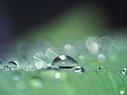 雨水节气和古水节气的区别