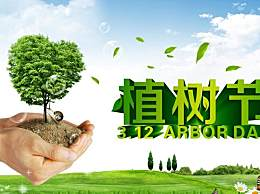 3.12植树节的起源和由来 植树节是为了纪念谁而设立的