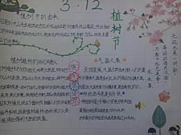 一年级小学生植树节手抄报文字内容 312植树节手抄报图片大全