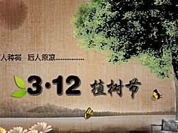 3月12日植树节宣传标语简短口号 有创意的植树节标语