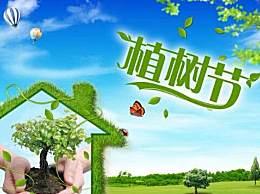 植树节的由来100字介绍 植树节的来历是什么