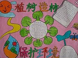植树节手抄报文字内容50字 植树节宣传语标语口号