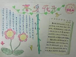 植树节手抄报简单又漂亮 小学生植树节手抄报一等奖