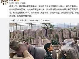 韩寒认养两头河马 动物园经营困难开展认养活动
