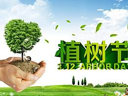 2020植树节是几月几号?植树节的起源和由来