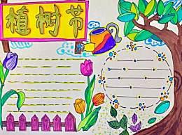 2020小学生植树节手抄报简单又漂亮 植树节手抄报图片模板