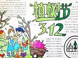 关于植树节的标语图片 植树节的宣传标语10字以内40条