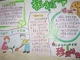 中小学生植树造林的手抄报大全 植树的快乐作文范文