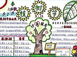 小学生植树节简单精美手抄报 植树节创建绿色家园