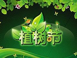 有关植树节的宣传标语和口号 植树节口号有哪些
