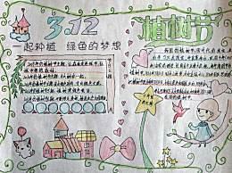 小学生关于植树节的手抄报画报 关于植树节的诗句名言名句佳句