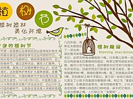 植树节手抄报简笔画图片 关于植树的趣味小故事