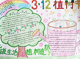 植树节手抄报一等奖漂亮图片 植树节手抄报简单又好看的画