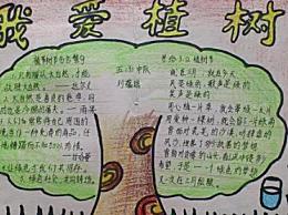 植树节手抄报以及文字内容 简单好看的植树节手抄报图片