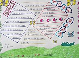 植树节手抄报图片以及句子内容 关于植树的小故事