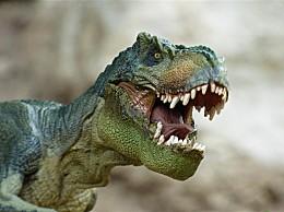 侏罗纪世界3停拍 暂不确定还能否赶上档期