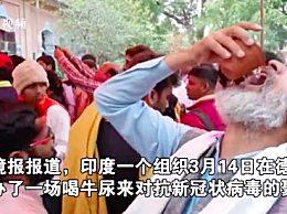印度聚众喝牛尿 用牛尿抗新冠亮瞎眼