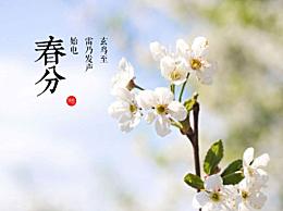 描写春分节气的诗句诗词 春分节气问候祝福语经典