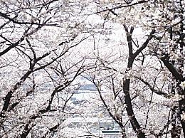 春分节气起源是什么?春分的起源的民俗介绍
