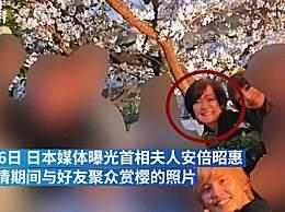 安倍夫人违反防疫令 与好友聚众赏樱拍照