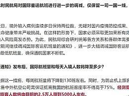 """是否会组织包机接回海外华人?民航局回应""""包机撤侨""""详情"""