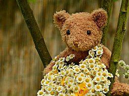 3月再见4月你好早安心情 走过三月迎来四月的唯美句子