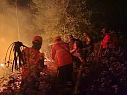 西昌森林火灾19人遇难 风向忽变一行人被大火包围