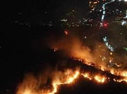 西昌森林大火最新消息