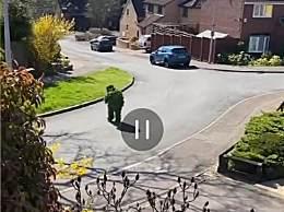 英国人穿吉利服出门 以为出门扮成灌木病毒就认不出他来了?