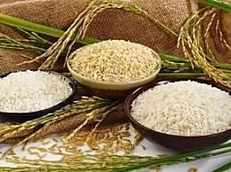 网传粮食危机要囤米 粮食危机是真的吗