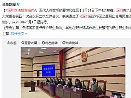 深圳立法禁食猫狗:自2020年5月1日起施行