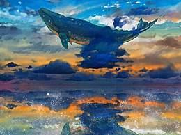 南海首次发现鲸落