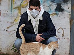 猫感染或由人传播是怎么回事
