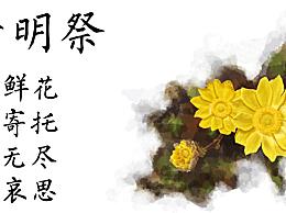 清明节网络文明祭扫活动感想