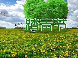 清明节踏青作文5篇