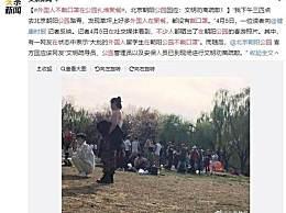 朝阳公园回应聚餐 外国人不戴口罩在公园扎堆聚餐咋回事