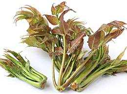 香椿芽的功效与作用 吃香椿有什么好处