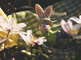 复活节的习俗有哪些
