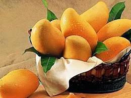 吃芒果为什么会过敏
