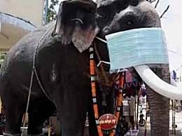 印度给大象模型戴口罩