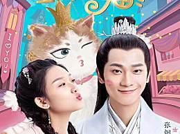 报告王爷王妃是只猫什么时候更新