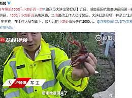 货车爆胎1500斤小龙虾洒一地 路政人员火速赶赴现场捉虾