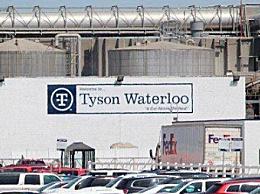 美国泰森食品一工厂890名员工确诊