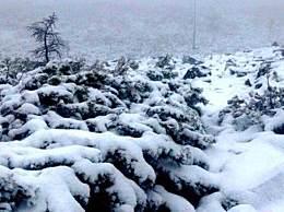 中国最冷小镇降大雪