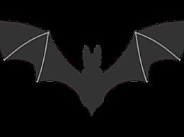 为什么这么多疾病来自蝙蝠